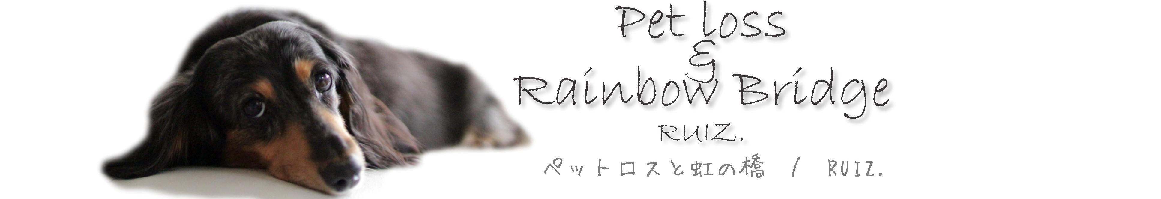 ペットロスと虹の橋 / RUIZ.